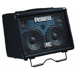 ROLAND KC-110 Stereo