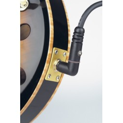 Planet Waves Cable CGTRA 20 6mts Codo